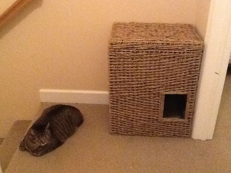 DIY hidden litter box out of a clothes hamper. Just made it today!