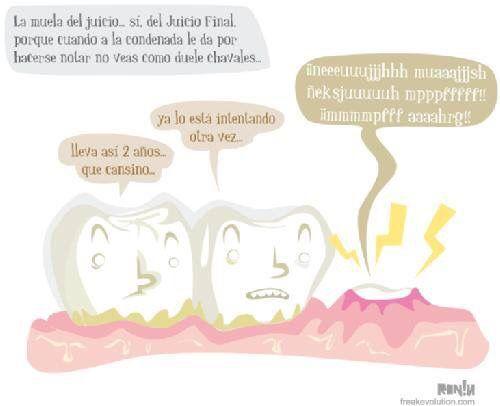 Tercer molar