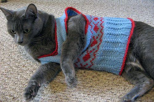 Dog Sweater Knitting Pattern Circular Needle : Free knitted cat vest pattern. Im feeling evil. Craft ...