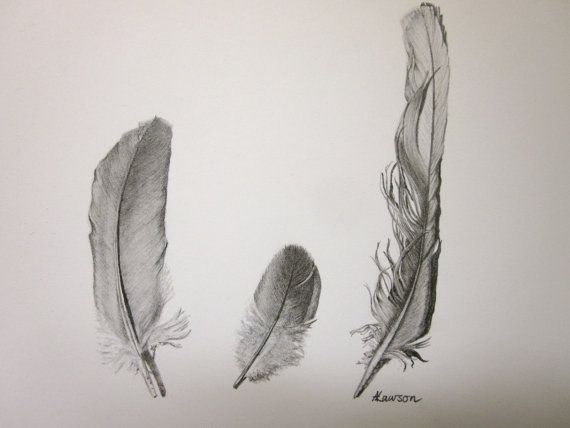 3 feathers original pencil drawing by anne4bags on Etsy