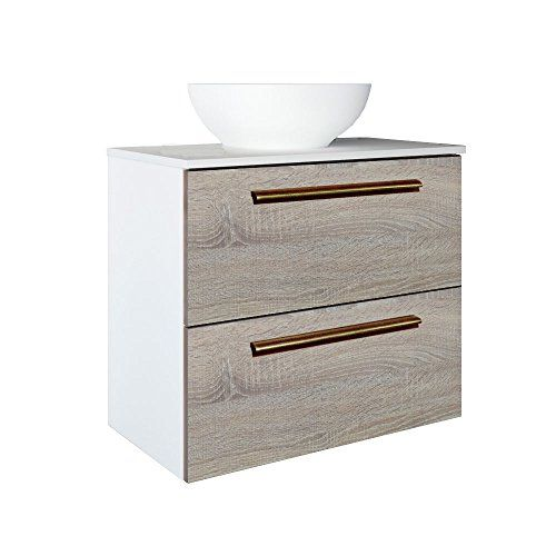 Randalco 24 Inch Maine Solid Surface Modern Bathroom Vanity