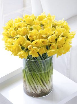 Daffodils, because they always make her smile.... a sign that Spring has arrived....and what we always gave her as small children