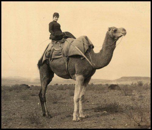 Bridget Darmody on a camel, Parachilna, South Australia, 1892.  Source: State Library of South Australia