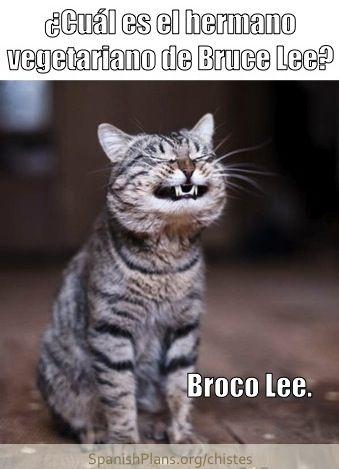 Broculi Spanish joke from SpanishPlans.org