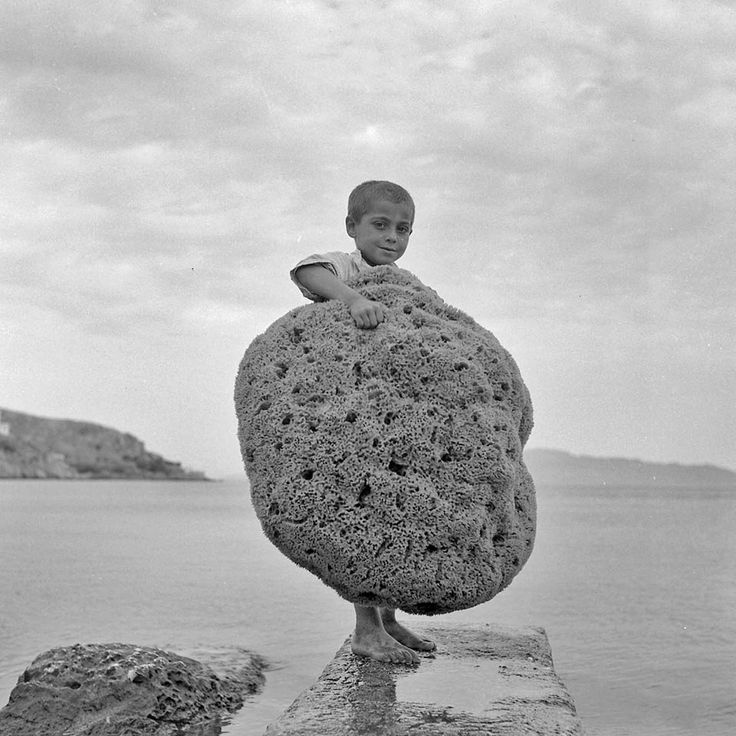 Giant sea sponge. Kalymnos island, Greece, 1950. Photo by Dimitris Harissiadis, Benaki Museum.