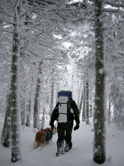 Appalachian Trail Ultralight Hiking Guide
