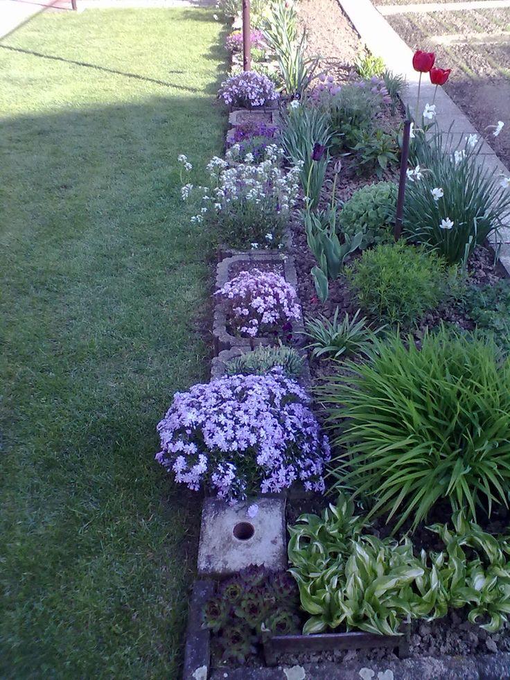 Kvetoucí záhonek