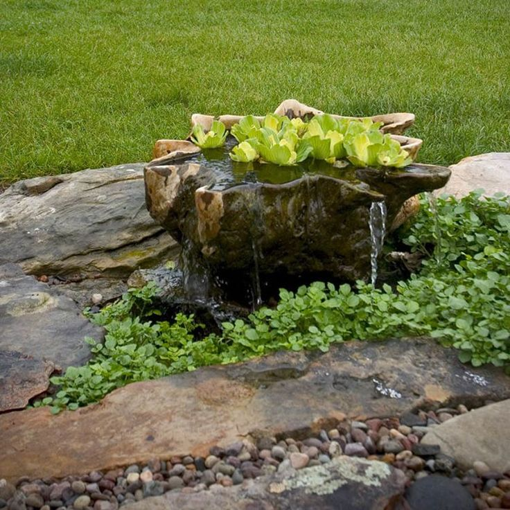 A unique wooden bowl becomes a dripping container water garden. A sub-surface reservoir houses a pump to recirculate the water. #waterfeature #landscaping
