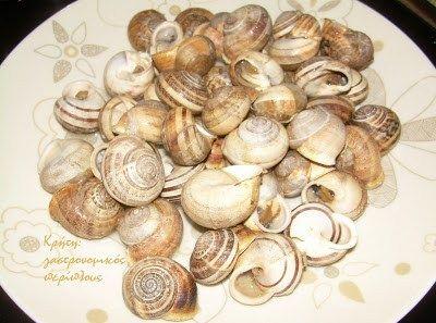 Τα πιο νόστιμα σαλιγκάρια εδώ στην Κρήτη, θεωρούμε ότι είναι αυτά που βρίσκουμε αυτή την εποχή και όλο το καλοκαίρι. Οι γυρευτοί χοχλιοί όπως τους λέμε είναι εκείνοι που έχουν πέσει στ…