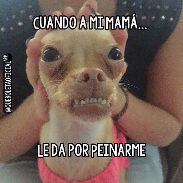 Cuando me peina mi mamá. #humor #risa #graciosas #chistosas #divertidas