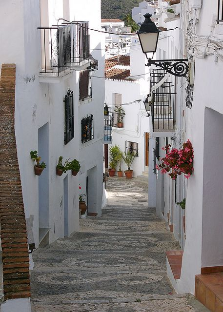 Attractive old street in one of the better known pueblos blancos (white towns) of Andalucia.