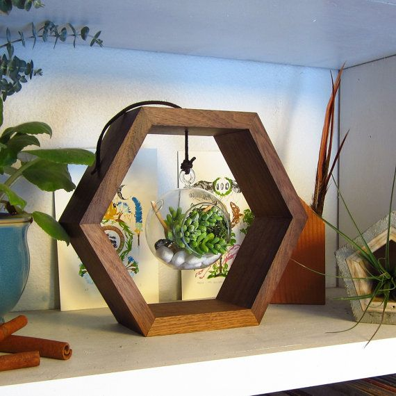 Black Walnut Hexagon with Hanging Terrarium by MastersonMadeCA $50