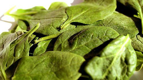 3 recetas sabrosas con espinaca - Mejor con Salud