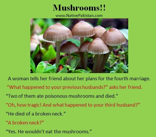 Best Jokes in English - Poisonous Mushrooms - Husband & Wife Jokes in English
