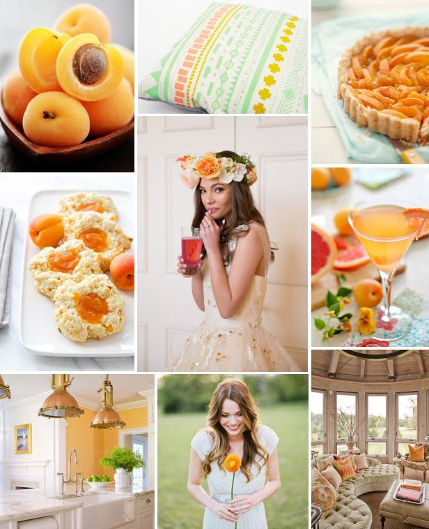 Mood Board Monday: Apricot (http://blog.hgtv.com/design/2014/06/02/mood-board-monday-apricot/?soc=pinterest)Mangia Bene, Hgtv Design, Apricot Recipe, High Point, Marketing, Hgtv Mood, Boards Mondays, Blog Designs, Design Blog