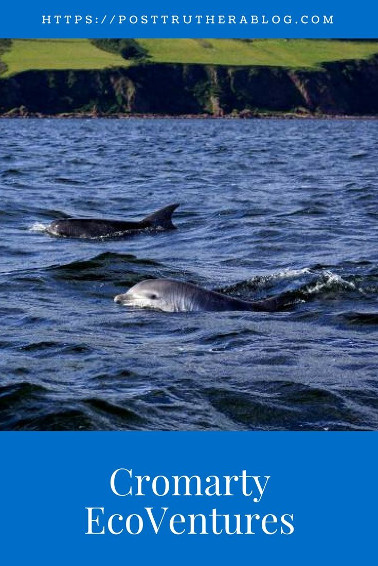 Dolphin and Wildlife Watching Boat Trips run by EcoVentures, Cromarty in the Moray Firth, Scotland.