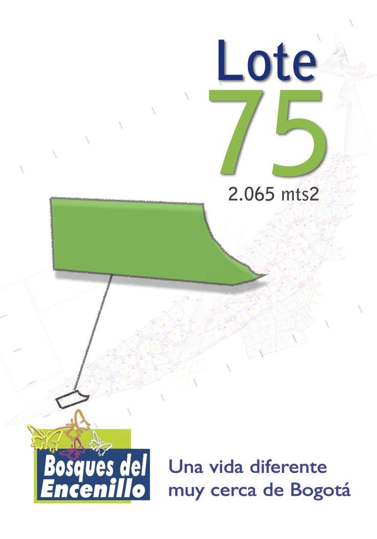 Lote 75  http://www.bosquesdelencenillo.com #ventaloteslacalera