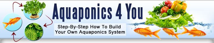 Aquaponics.  Raising fish and plants in concert to provide abundant quality food.  Work smarter, not harder.