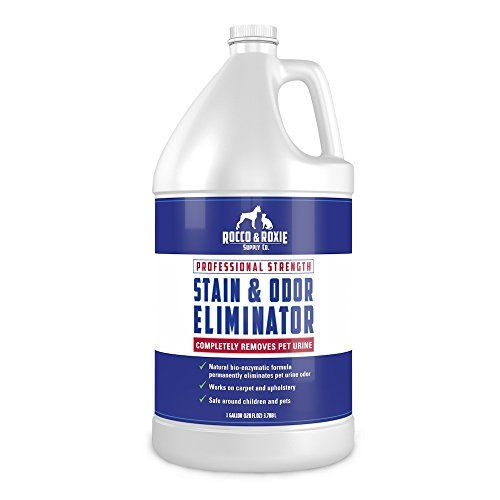 5 Best Pet Odor Eliminators for Removing Dog's Urine Smell