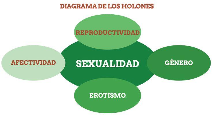 TOUCH esta imagen: Diagrama de los Holones by Equidad de Género