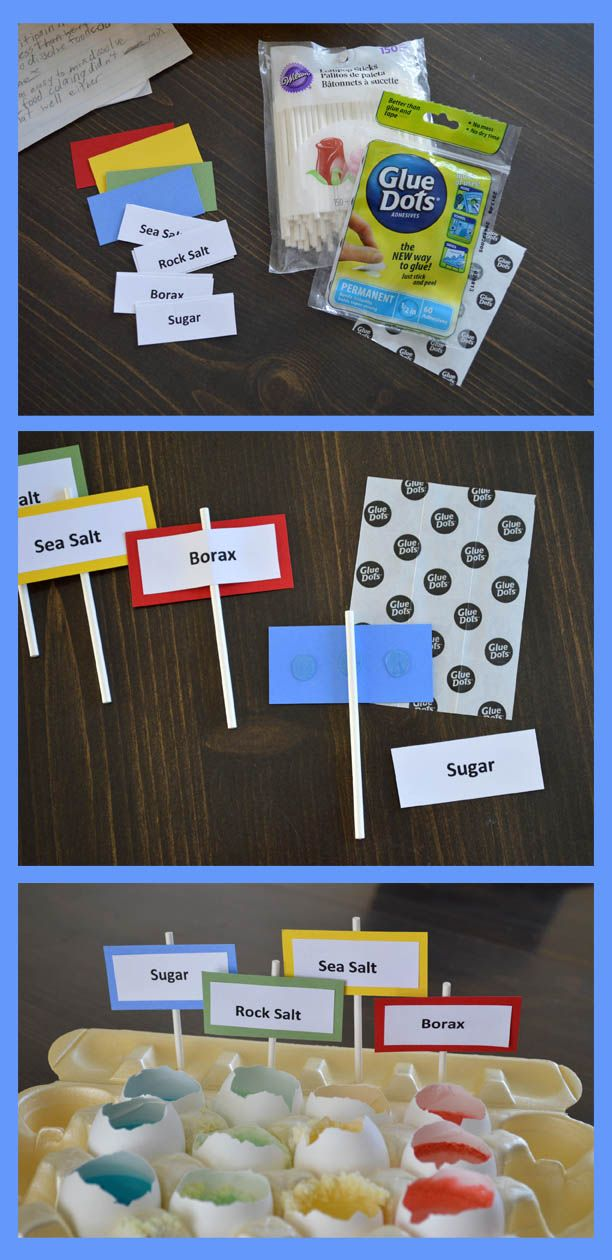 Designer Dawn is back on our blog with two great uses for Glue Dots for science projects this school year!