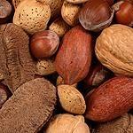 15 high protein diet recipes