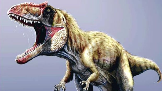 Paleontologists at the University of Alberta have a new theory for why some dinosaurs stood on two feet instead of four. The researchers found clues in the tails of the ancient creatures' much smaller ancestors, proto-dinosaurs.