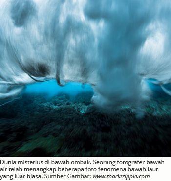 Dunia misterius di bawah ombak. Seorang fotografer bawah air telah menangkap beberapa foto fenomena bawah laut yang luar biasa.