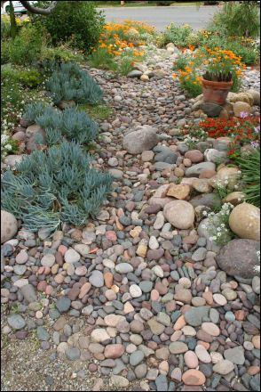 1000 images about xeriscape ideas for michelle 39 s front yard on pinterest gardens herbs. Black Bedroom Furniture Sets. Home Design Ideas