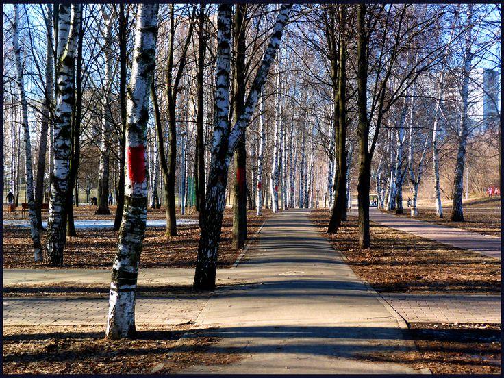 Москва. Парк Медведково. Март.