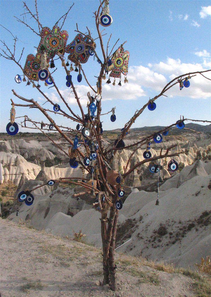 Evil Eye tree (by Praziquantel)