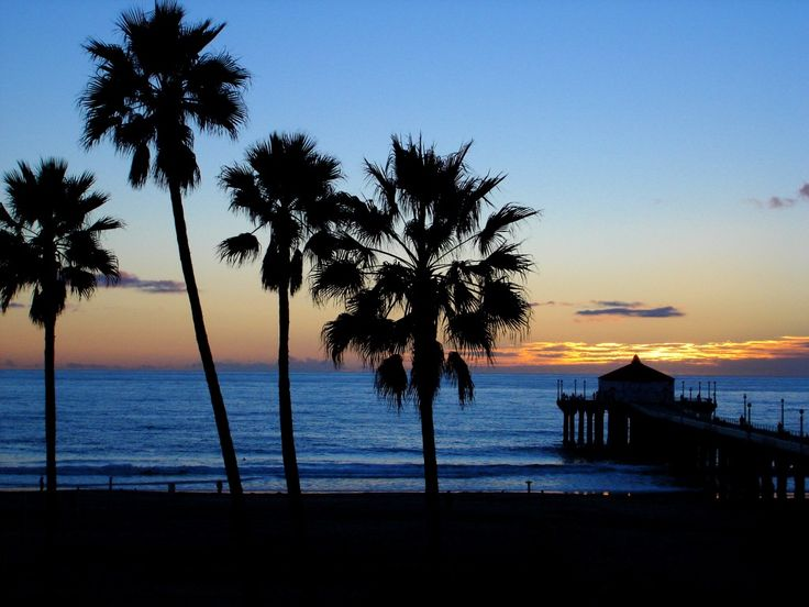 California Beaches Palm Trees Hd Images 3 HD Wallpapers
