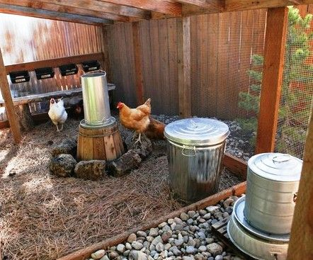 Clean chicken coop.
