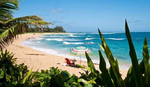 Banana Beach House: Kauai's verdant north shore is only a few steps from the door. #JSIslandTime
