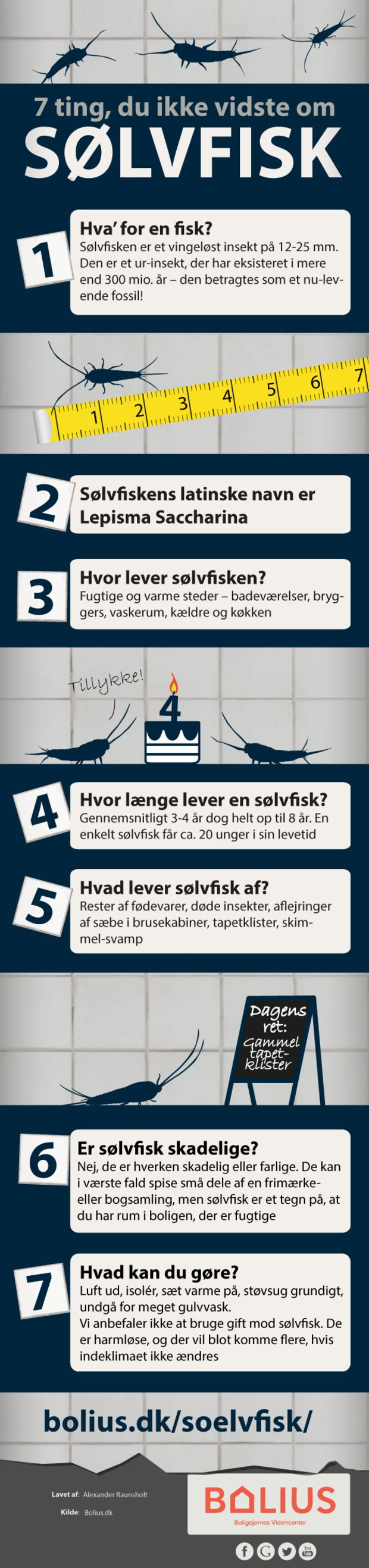 Infografik: Sølvfisk