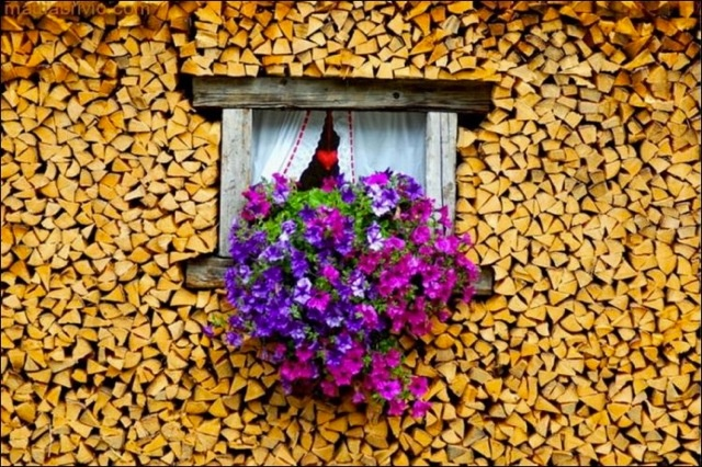 This is perfect for my front porch in suburbia where hubby likes to keep our firewood under our covered front porch (dry and convenient) - Maybe the neighbors won't notice if I do this...