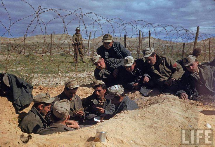 Fu scattata in Tunisia nella primavera del 1943, quando le forze dell'Asse si arresero agli alleati. Esiste a colori ed è stupenda!!