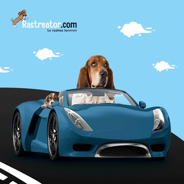 Mira a Rastreator!! lleva a sus peques protegidos en el coche!!! http://blog.rastreator.com/seguridad-en-el-coche-de-los-pequenos/
