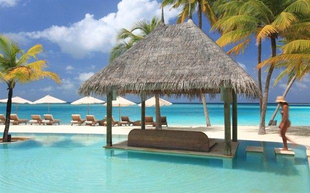 The Maldives: Gili LankanfushiAmazing,  Thatched Roof, Gili Resorts, Sense Soneva, Soneva Gili, 1 215 Night Soneva, Places, Accessible Maldives, Gili Lankanfushi