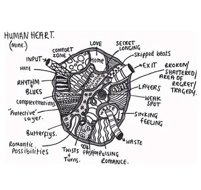 D Line Drawings Quotes : Heart love inspiring tumblr drawing quotes pinterest