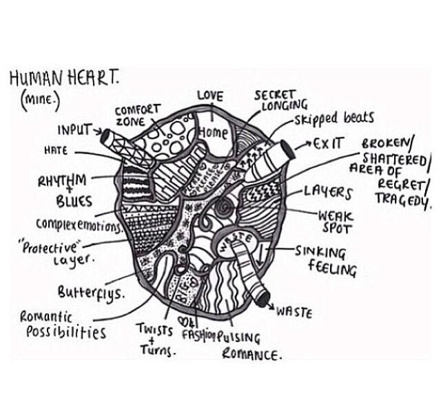 heart love inspiring tumblr drawing quotes pinterest