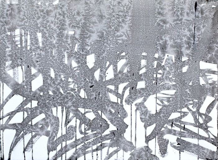 """Janicke Schønning - Winter: Winterdrawings - """"Wintercalligraphy"""" - From various winter days drawing outside in the spruce forest nearby - Ink and frost on paper, 2013"""