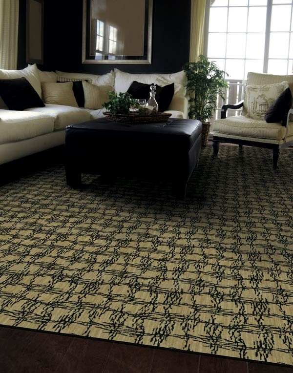 9 Best Tru Accents Carpet Collection By Shaw Floors Images