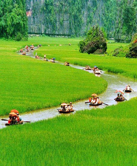 Cuc Phuong National Park, Ninh Binh province, Vietnam: - PixoHub