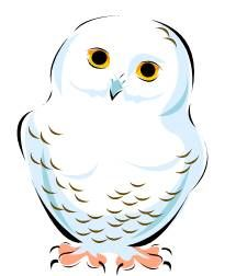 Owl Clip Art Snowy And Art On Pinterest