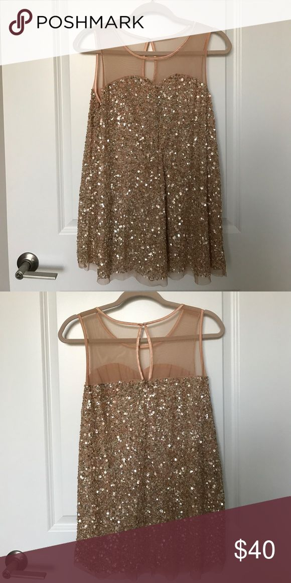 Lane Bryant Collection Sparkly Top Sparkly tunic top. Only worn once. Perfect condition. Lane Bryant Tops Tunics