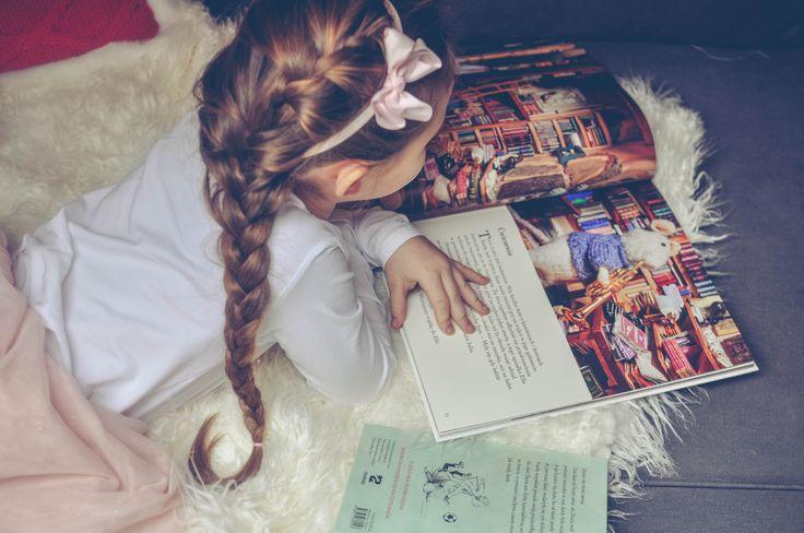 #reading #book #longhair #christmas  www.mybellepapillon.pl