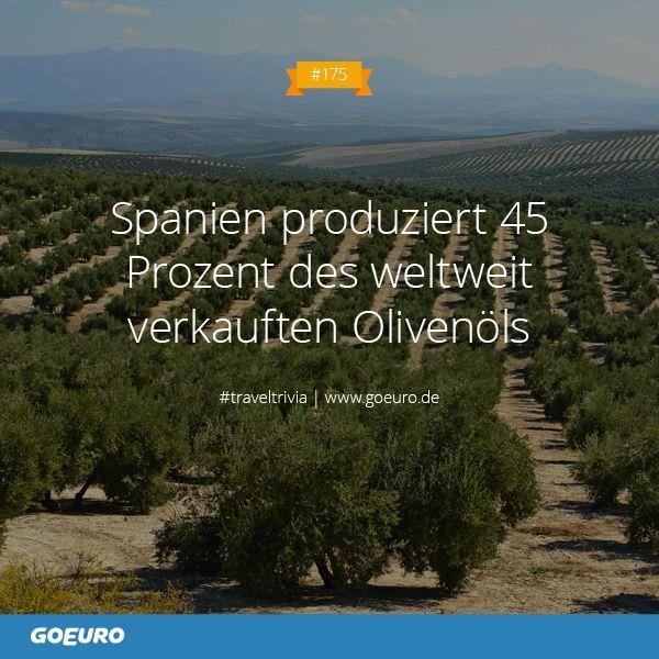 #TravelTrivia #175: #Spanien produziert 45 Prozent des weltweit verkauften Olivenöls