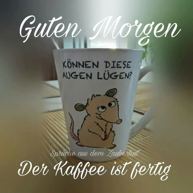 Good Morning Everyone In Dutch : Die besten boa noite em alemão ideen auf pinterest