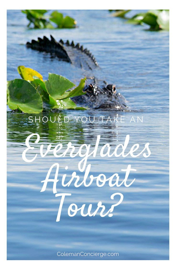 Airboat Tours in the Everglades Should you go